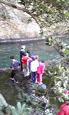 念願の桂島ビバーク訓練